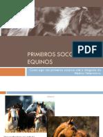 Primeiros Socorros em Equinos.pptx