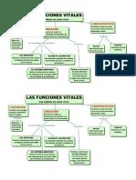 Mapas Conceptuales Funciones Vitales