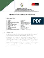 Programacion Anual Arte 2014 (2)