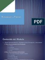 Percepción y Praxias
