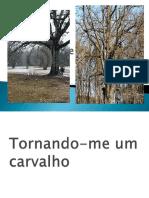 Rnando Meumcarvalho 130617235234 Phpapp01 (1)