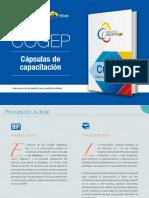 COGEP ESTUDIO 1
