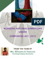 amalgamation_final.pdf
