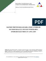 Raport IP Pentru Anul 2015