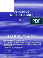 4.-Depositos Intracelulares