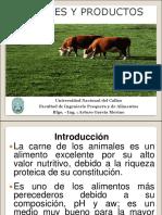 9. Carne y Productos