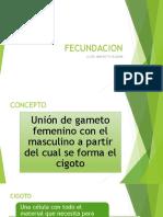 Fecundación y Desarrollo Del SNC (1)