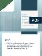 Dna, Genom Dan Kromatin