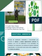 Auditoria Ambiental g 10