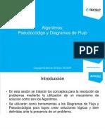 U13 Programación I Algoritmos- JF