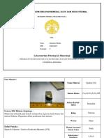 Laporan Praktikum Endapan Mineral Bijih Dan Hidrotermal2_johannes Silaban_1506723673