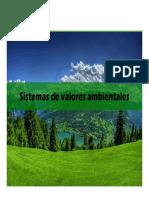 Clase 3. Sistema de Valores Ambientales