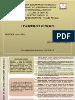 Mapa Conceptual Derecho Trabajo III Libertad Sindical