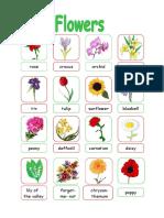 Flowers Classroom