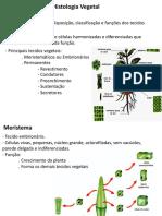 Histologia-Vegetal.pdf