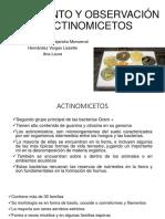 362511650-Actinomicetos