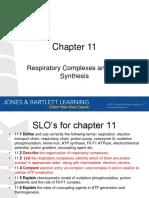 CH11 Oxidative Phosphorylation