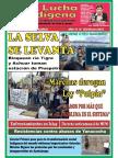 260753653-Lucha-Indigena-102.pdf