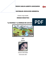 Guzman Carla Anabel - La Materia y La Energia en Los Ecosistemas. 3er Año de Nivel Inicial Leguizamon.