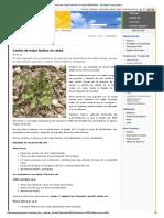 Control de Malas Hierbas en Cereal AGROPAL - Sociedad Cooperativa