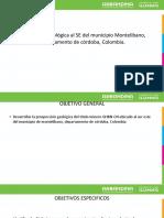 Prospeccion Geológica Al SE Del Municipio Montelibano