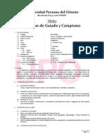 Periodo20151 Turismo Ciclo9 Tecnica de Guiado y Campismo