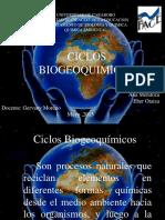 Los Ciclos (1)