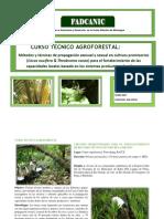 Curso Tecnico Agroforestal (1)