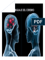 Lenguaje Del Cerebro NEURO