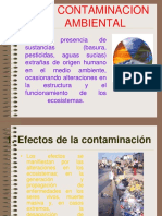 La Contaminacion Ambiental 091023082715 Phpapp01