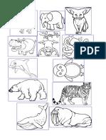 Picture Animals