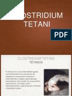 Clostridium tetani.pptx
