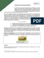 Rp Mat5 k11 Ficha 11 Convergencia en Sistemas Dinámicos