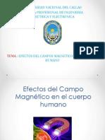 Efectos Del Campo Magnético en El Cuerpo Humano