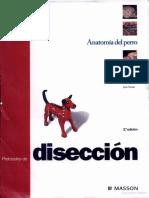 PROTOCOLO DE DISECCION DEL PERRO.pdf