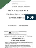 Stage_4_novel_unit_Holes.doc