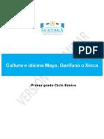 06 Cultura e Idiomas Maya Garifuna o Xinca Primero Básico