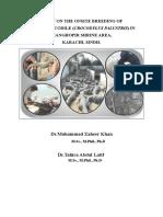 STUDY ON THE ONSITE BREEDING OF MARSH CROCODILE (CROCODYLUS PALUSTRIS) IN  MANGHOPIR SHRINE AREA, KARACHI, SINDH.