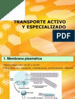 Transporte Activo y Especializado