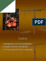 Hormon Tumbuhan Ppt