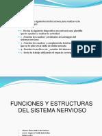 Actividad Del Sistema Nervioso Cs2 Iliana Dalila Ead Ciencias de La Salud II