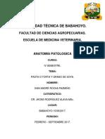 Pasta de Soya Grano de Soya André Rocha 08 - 17