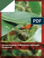 Manejo Integrado de Monalonion Velezangeli en Aguacate