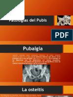 Patologías 2.Da Exposicion Anatomia.da Exposicion Anatomia.da Exposicion Anatomia