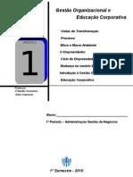 APOSTILA 1 - ORGANIZAÇÃO DE EMPRESAS