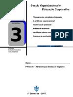 APOSTILA 3 - ORGANIZAÇÃO DE EMPRESAS