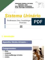 Urinário.pdf2018j