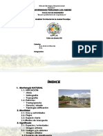 Analisis Territorial Pucallpa
