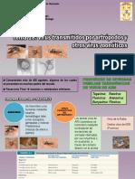 Tema 18 Virus Transmitidos Por Artrópodos y Otros Virus Zoonóticos 2017.Pptx