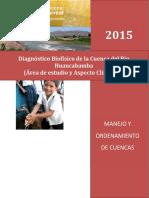 Diagnostico de Cuenca